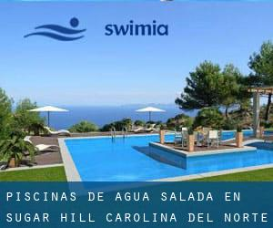 Piscinas de agua salada en Sugar Hill (Carolina del Norte)