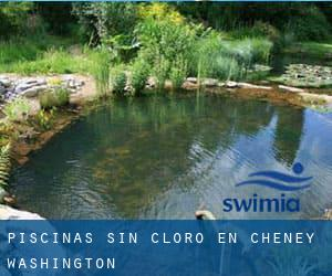 Piscinas sin cloro en Cheney (Washington)